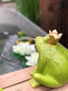 Rehner Gartencenter | Dekoration