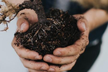 Rehner Gartencenter | Pflege und Zubehör