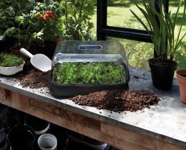 Rehner Gartencenter   Für jede Topfpflanze den passenden Pflanzkübel